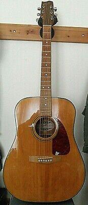 Fabulous Vintage Korean Made Fender Acoustic Guitar - Circa 1980's?
