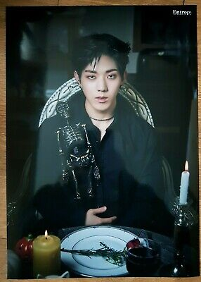 """DAY6 DoWoon Limited Poster - Official New 3rd Album """"The Book of Us : Entropy"""""""