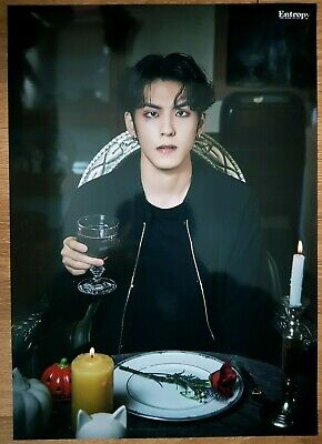 """DAY6 WonPil Limited Poster - Official New 3rd Album """"The Book of Us : Entropy"""""""