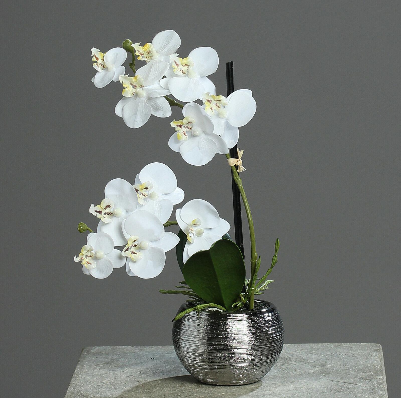 Künstliche Orchidee 30cm Creme Keramiktopf silber Kunstblumen künstliche Blumen
