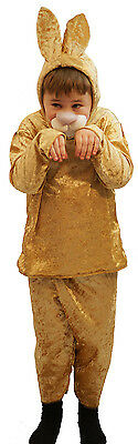 World Book day-Easter-Unisex-Brer-Ben Rabbit THE HARE Costume All Ages/Sizes