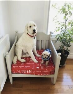 Lit pour grand chien/dog bed
