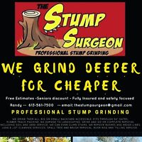 AFFORDABLE STUMP GRINDING AND REMOVAL.