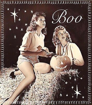 Retro Halloween Fabric (BOO Retro Witches Set of two 5x7 Halloween Vintage Cotton Fabric Blocks)