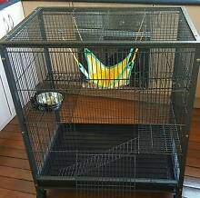 Ferret Cage Cardiff Lake Macquarie Area Preview
