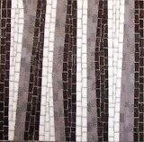 MOSAIC CLASSES Belmont Geelong City Preview