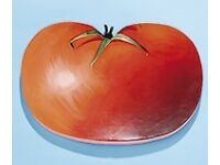 GARDMAN Tomato Shaped Kneeler