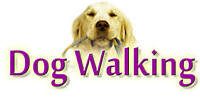 Pet Sitting Dog Walker