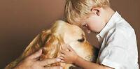 Partenaire animal pour zoothérapie
