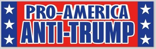 PRO-AMERICA  ANTI-TRUMP BUMPER STICKER DECAL BIDEN BERNIE CUOMO 2020 PRESIDENT