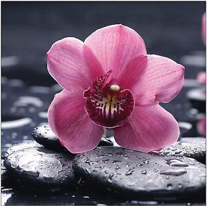sticker deco galet zen fleur ref 519 16