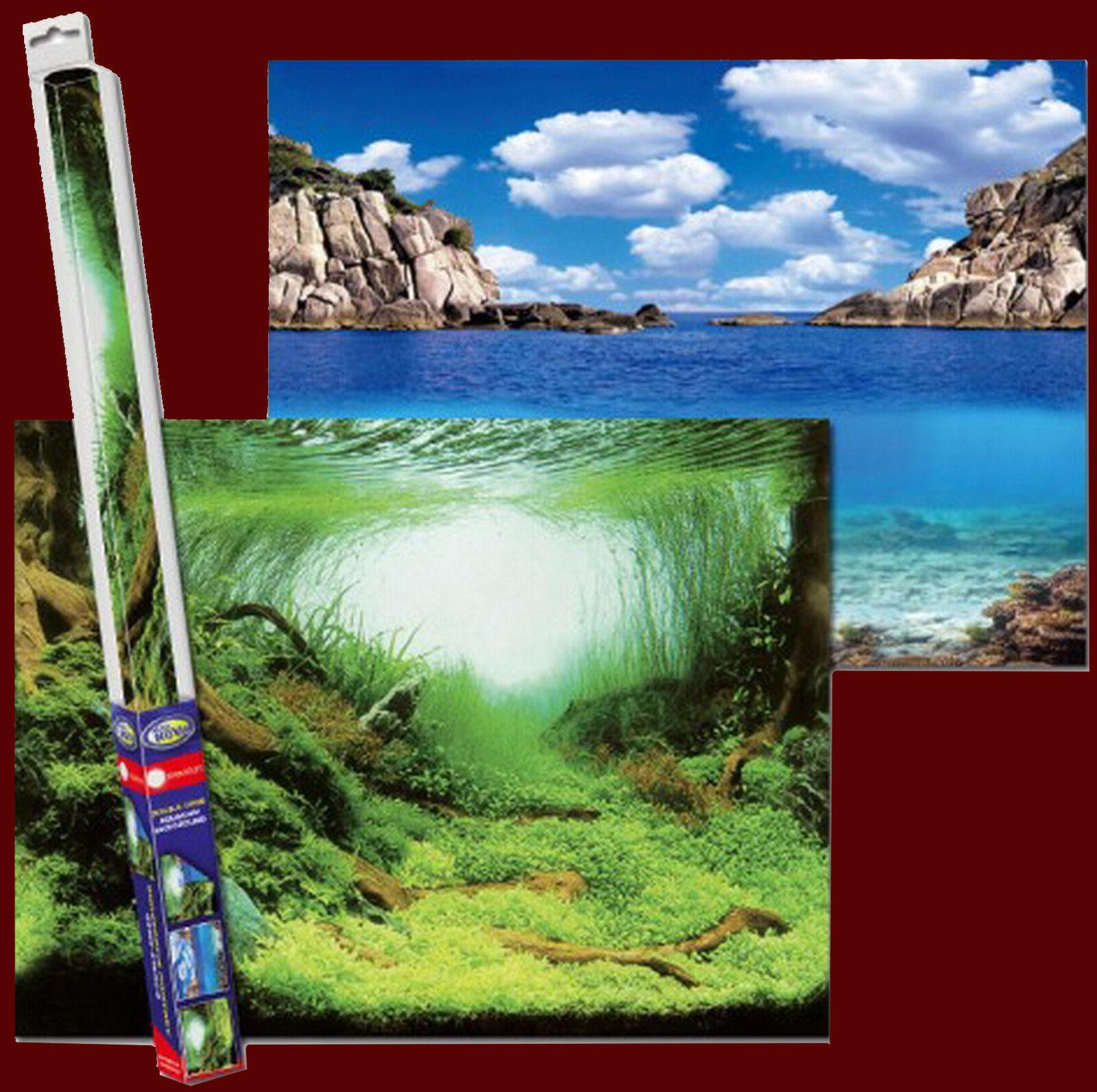 Aquarium Deko ❤️ RÜCKWANDFOLIE 60 X 30cm ❤️ Fotorückwand Zubehör Dekoration