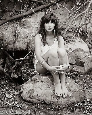 Linda Ronstadt 8 x 10 GLOSSY Photo Picture
