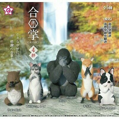 Gassho Animal - Praying cat - New in open box