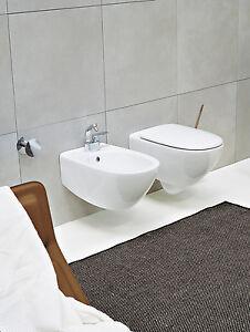 Wc spin sospeso con sedile termoindurente 5085cw02 for Cambiare tavoletta wc sospeso