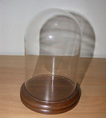 Glasdom Buche- nussbaum ,Glassturz ,Uhrensturz,Tischuhr, Standuhr, Kaminuhr