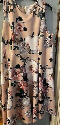 Calvin Klein Tan Floral Dress Size 20w