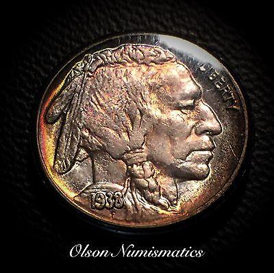 Olson Numismatics