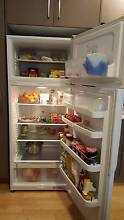 Fisher&Paykel Fridge - Moving Overseas Sale Maroubra Eastern Suburbs Preview