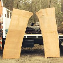 SYDNEY RED GUM TIMBER SLABS HUGE Elimbah Caboolture Area Preview