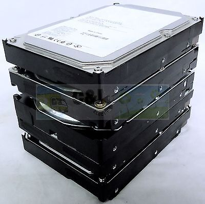 LOT OF 5 MAJOR BRAND 250GB DESKTOP INTERNAL SATA HARD DRIVE 3.5