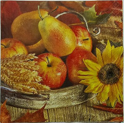 FRUIT HARVEST 2 single LUNCH SIZE  paper napkins for decoupage 3-ply