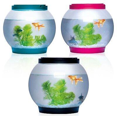 Fish Bowl (5 Litre Glass Fish Bowl LED Light Aquarium Goldfish Betta Tank Accessories New)