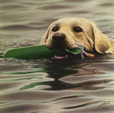 "JOHN SILVER ""Dummy Run"" gun dog swimming SIGNED LIM ED! SIZE:41cm x 40cm NEW"