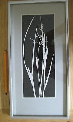 photograph number 1 grasses russell a robertson signed hay 1985 nazeing
