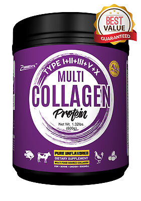 PREMIUM Multi-Collagen Protein Powder 21oz Best Value - High-Quality Blend (Best High Quality Protein Powder)