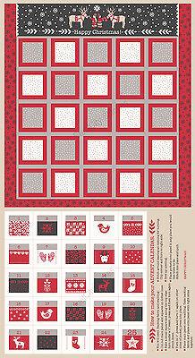 Christmas Nordic Advent Calendar Cotton Fabric LEIC8-1 I Met Santa 24