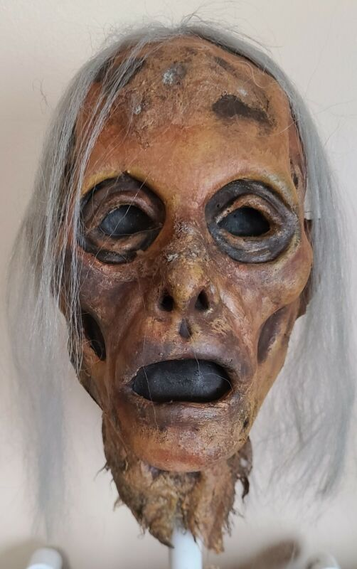 Rotted Corpse - Zombie Head - Severed Halloween Horror Prop - 091121-05