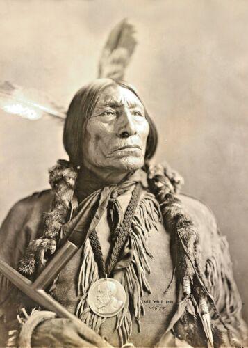 CHIEF WOLF ROBE-Southern CHEYENNE CHIEF-Profile Indian Head Nickel-1904 PHOTO