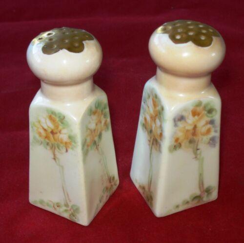 Vintage Salt & Pepper Shakers Porcelain Floral Vienna