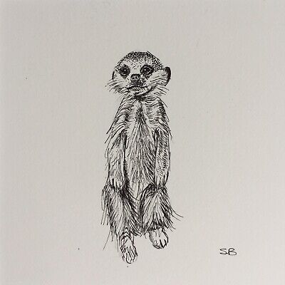 Original Artwork by Sungy Drawing Standing Meerkat On Watch