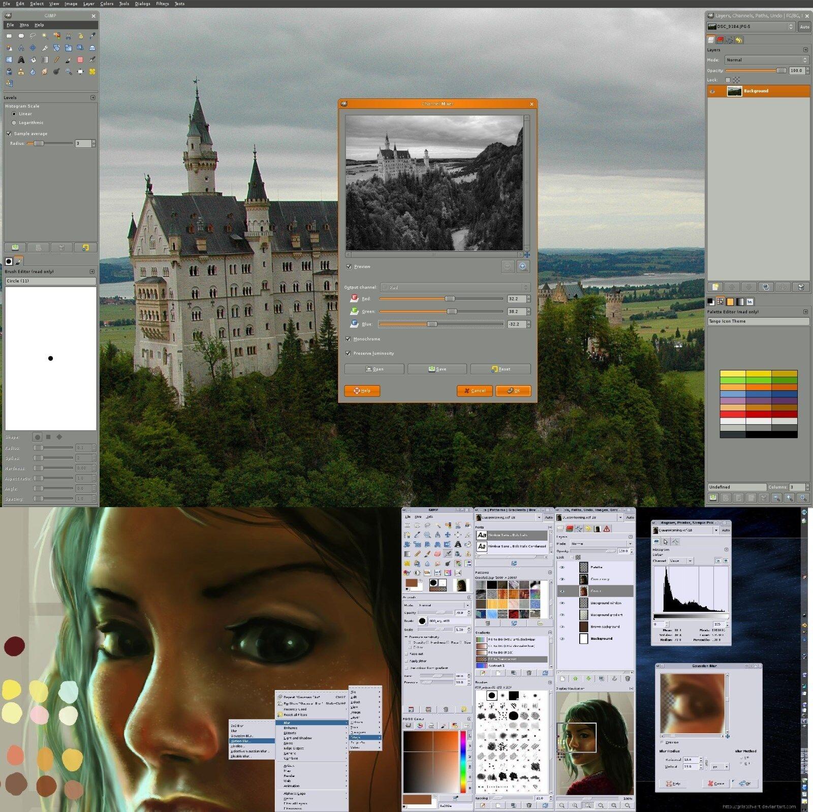 Canon photo editing software windows 10 20 best Shelties images on Pinterest Sheltie, Animais and Animales