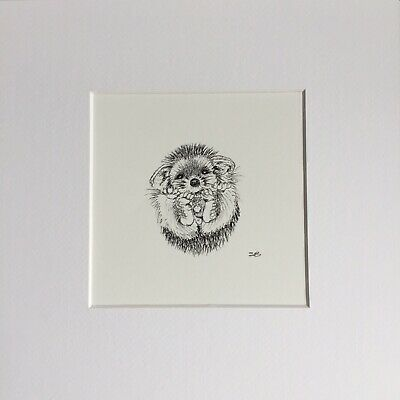 Original Artwork by Sungy Drawing Cute Baby Hedgehog