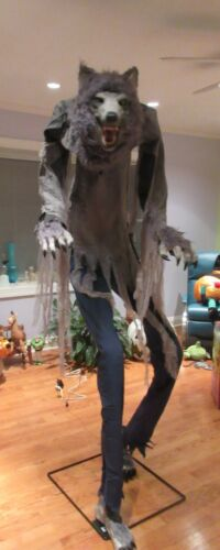 Home Accents Animated Towering Werewolf 6 Ft 6 In Halloween Display Prop Video