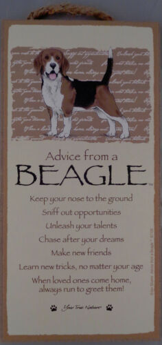 Advice from a BEAGLE 10 X 5 hanging Wood Sign MADE IN THE USA!