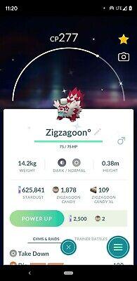 Shiny Galarian Zigzagoon Meloetta Hat✨ Pokemon Go! GoFest 2021