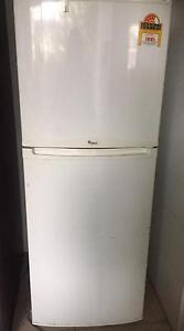 256LT WHIRLPOOL FRIDGE FREEZER IN GOOD CONDITION Clovelly Eastern Suburbs Preview