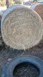 Round Hay Bales. Geelong Geelong City Preview