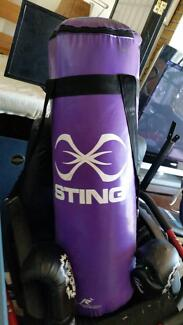 PUNCHING BAG AND BOXING TRAINING GLOVES IN GOOD CONDITION
