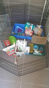 Rabbit cage and accessories Earlwood Canterbury Area Preview