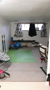 Pet Friendly, Large Fenced Back Yard, Bright 2,bedrooms Basement