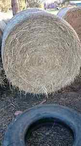 Round Hay Bales For Sale Geelong Geelong City Preview