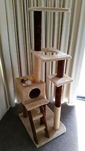 Cat tower, toys & litter tray Dianella Stirling Area Preview