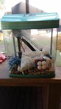 Fish Tank - Jebo R338 Marden Norwood Area Preview