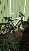 Giant Mens Mountain Bike - large - used twice - paid $590 Hurstville Hurstville Area Preview
