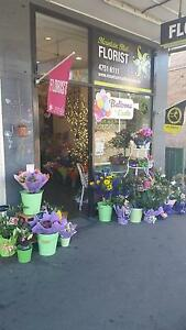 Beautiful Mid Mountains Florist Springwood Blue Mountains Preview